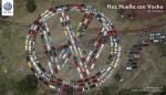 VW Haz Huella con Vocho